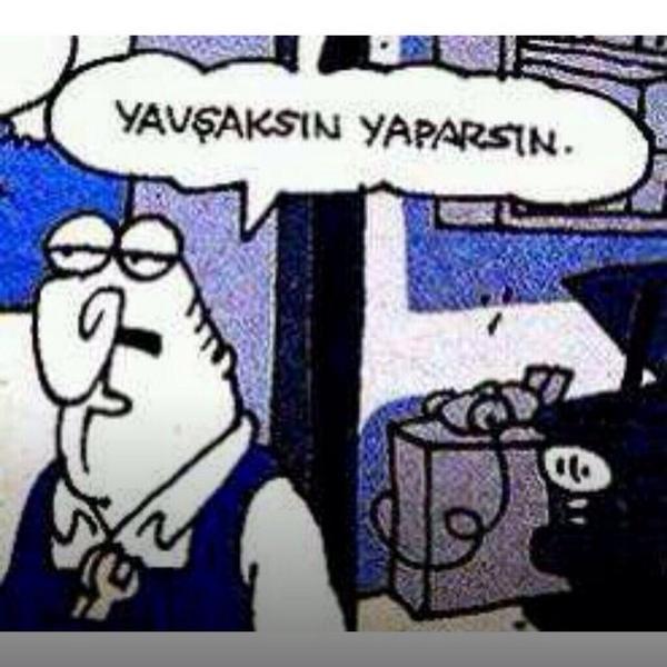 yavsaksin_1762123